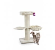 PetRebels Maine Coon 117 Rebel Cream