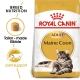 Royal Canin Maine Coon Adult 10+2 kg GRATIS