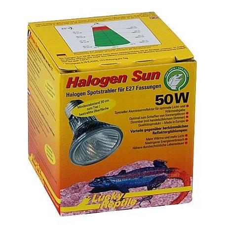 Lucky Reptile Halogen Sun 50W