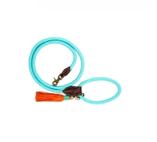 Dog With A Mission Hondenriem Turquoise L