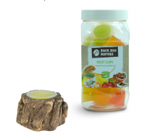 Back Zoo Nature Fruitkuipjes Reptiel 24 st + GRATIS Houder Bark-Look