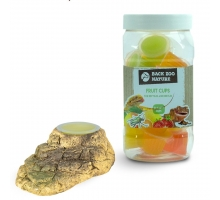 Back Zoo Nature Fruitkuipjes Reptiel 24 st + GRATIS Houder Stone-Look