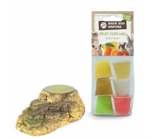 Back Zoo Nature Houder Stone-Look Knaag + GRATIS Fruitkuipjes