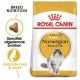 Royal Canin Norwegian Forest Cat Adult 10 kg