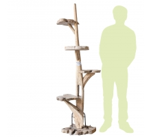 Back Zoo Nature Cattree Teak Nr. 30