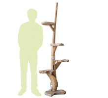 Back Zoo Nature Cattree Teak Nr. 31