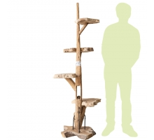Back Zoo Nature Cattree Teak Nr. 35