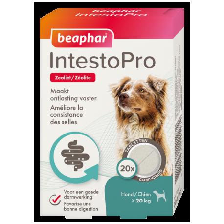Beaphar IntestoPro hond vanaf 20 kg