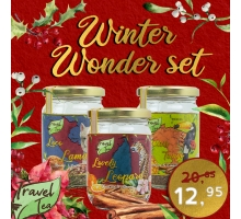 Travel Tea Winter Wonder Set