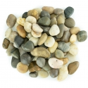 Back Zoo Nature River Stones S 1 kg
