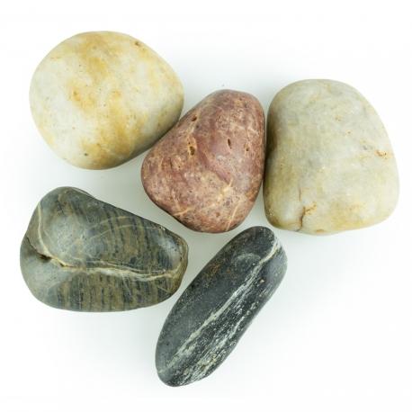 Back Zoo Nature River Stones L 1 kg