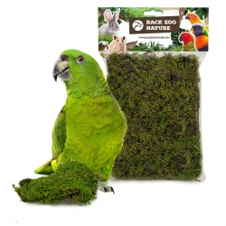 Back Zoo Nature Forest Moss 70 gram