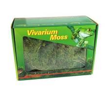 Lucky Reptile Vivarium Moss 150 gram