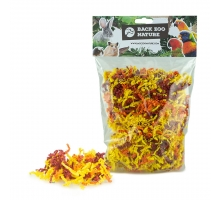 Back Zoo Nature Rodent Crinkle Paper Sun Mix