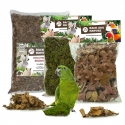 Back Zoo Nature Discovery Set 10 L