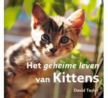 Het geheime leven van Kittens