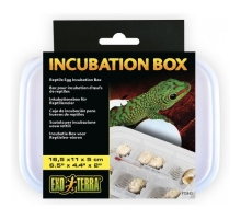 Exo Terra Incubator Box for Reptiles