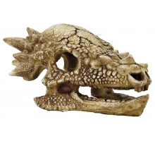 SuperFish Skull Ankylosaurus M