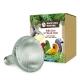 Back Zoo Nature Bird Sun UV-Lamp 70W