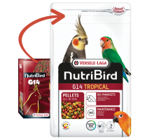 NutriBird G14 Tropical 10 KG