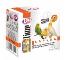 Lolo Pets Mineraalblok Small - Sinaasappel 2 stuks voor vogels