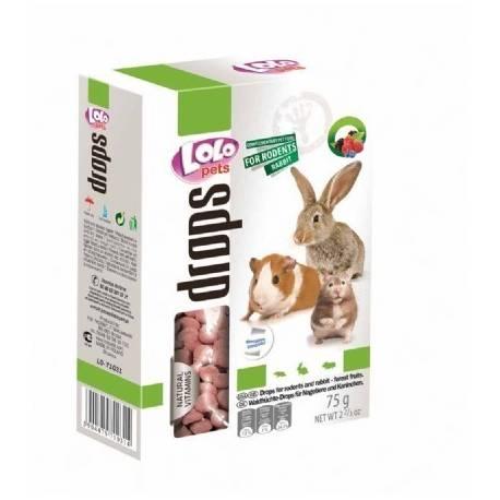 A la carte drops bosvruchten konijnen en knaagdieren Lolo Pets