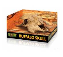 Exo Terra Buffalo SkullBuffel