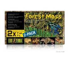 Exo Terra Forest Moss 500 gram