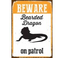 Beware Bearded Dragon on patrol - BLIK