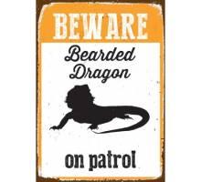 Beware Bearded Dragon on patrol - BLIK
