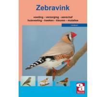 Zebravink