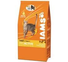 Iams Cat Chicken 1,50 kg
