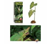 Dripper plant - drink systeem voor reptielen