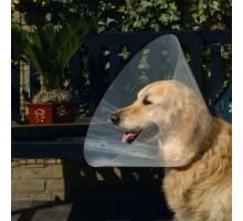Plastic hondenkraag Transparant 31-38 X 15 CM