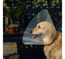 Plastic hondenkraag Transparant 47-57 X 30 CM
