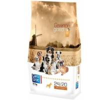 CaroCroc Premium Recovery (24/20) Sp. Power 3kg