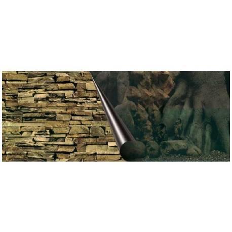 Foto-achterwand Tree en Rock 120x50cm