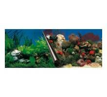 Foto-achterwand 60cm coupe Stone en Coral 30 cm