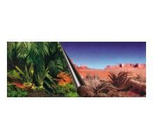 Foto-achterwand - 60 cm-coupe Jungle en Dessert - 30 cm
