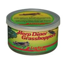 Herp Diner - Grasshoppers medium 35g