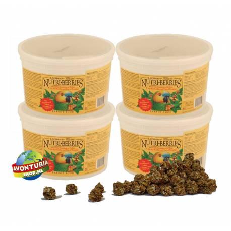 Lafeber Nutri-Berries Classic Parrot 5,9 kg