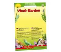 Lucky Reptile Herb Garden - Alfalfa