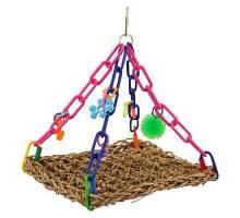 Vliegende Papegaaien Trapeze