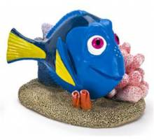 Dory with Coral small