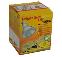 Bright Sun UV Desert 100W