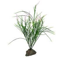 Lucky Reptile Mediterranian Grass