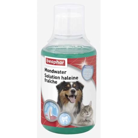 Beaphar Mondwater Hond/Kat 250 ml