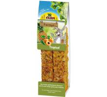 JR Farm Farmys tropical 160 gram