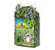 JR Farm groene haver 100 gram