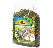 JR Farm kamille 100 gram